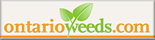 Review Ontario weeds; 139 weed are included in this database.